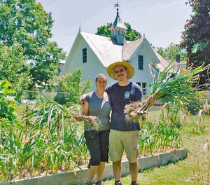 Local Garlic for Fall Planting